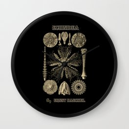 """""""Echinidea"""" from """"Art Forms of Nature"""" by Ernst Haeckel Wall Clock"""