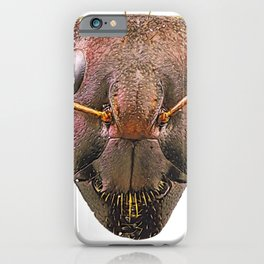 Ant Face Ultra Zoom Antennas Insecta Rough Surface iPhone Case
