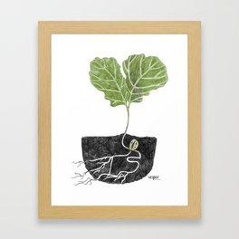 Oak Baby Framed Art Print