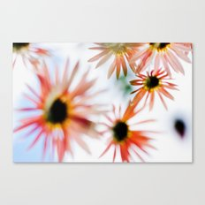 Happie (Daisies) Canvas Print