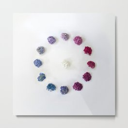 Circle of Hydrangea Metal Print