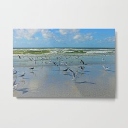 Time for Me to Fly Metal Print