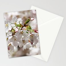 springtime! ... under the cherry tree 01 Stationery Cards
