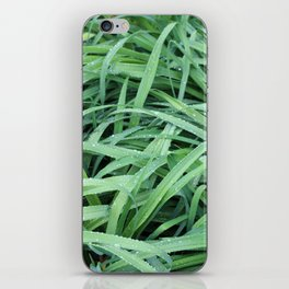 Morning Dew on the Grass 2 iPhone Skin