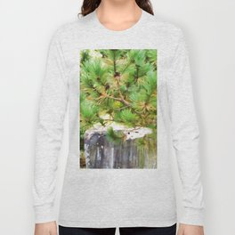 Evergreen tree branches with cones Long Sleeve T-shirt