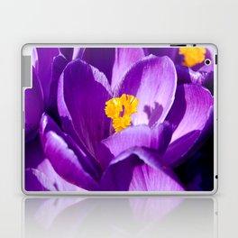 Purple sea Laptop & iPad Skin
