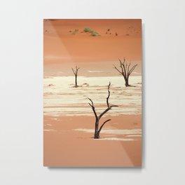 NAMIBIA ... Deadvlei III Metal Print
