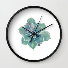 california rock rose succulent Wall Clock