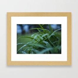 Rain Leftover Framed Art Print