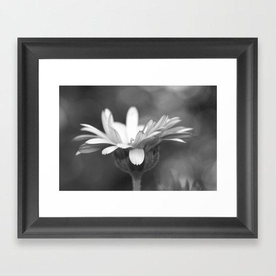 black and white flower...