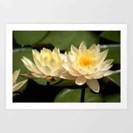 Longwood Gardens - Spring Series 281 Art Print