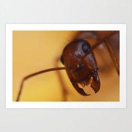 Giant Ant Art Print