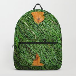 green grass field background with dry brown leaves Backpack