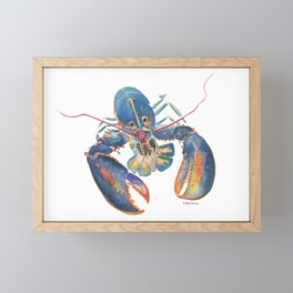 Sea Lobster Framed Mini Art Print