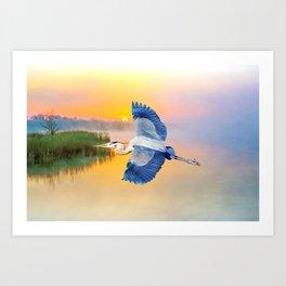 Great Blue Heron at Sunset Art Print