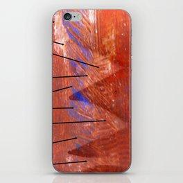 Trafic iPhone Skin