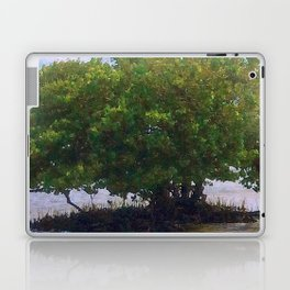 Mangrove Tree Laptop & iPad Skin
