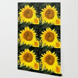 Kansas Sunflower & Honey Bee Wallpaper
