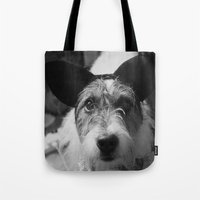 jack russell Tote Bags featuring Jack Russell by Arianne Kenworthy Photography