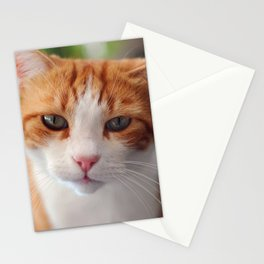 Garfield - a red cat Stationery Cards