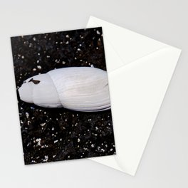 Sea Shell on Lava Rock Stationery Cards