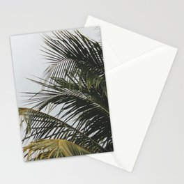 palm treee Stationery Cards