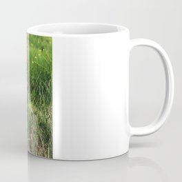 Old Swing Coffee Mug