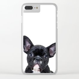 French bulldog portrait Clear iPhone Case