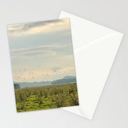 Birds and Mountains Stationery Cards