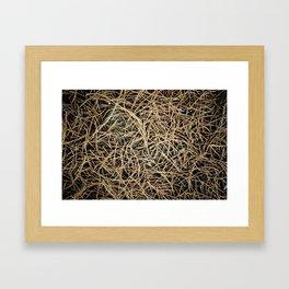 Ground Cover Framed Art Print
