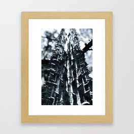 Spike Framed Art Print