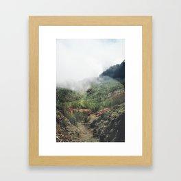 Mountain forest. Framed Art Print