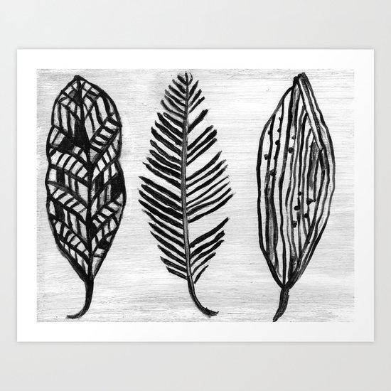 Feather Trio Art Print