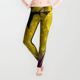 Droplets of Color Leggings