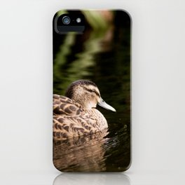 Female Mallard Duck iPhone Case
