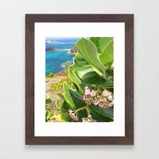 St. Barts succulents Framed Art Print