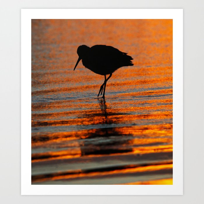 Sandpiper Sunset ~ Huntington Beach CA Art Print