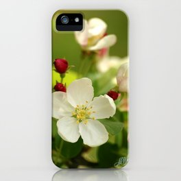 Budding trees iPhone Case
