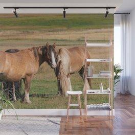 Gypsy Vanner Horses 0271 - Colorado Wall Mural