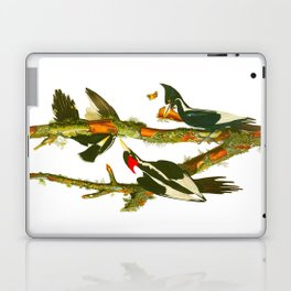 Ivory-billed Woodpecker Laptop & iPad Skin