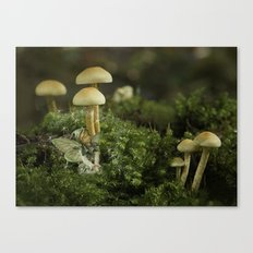Pixie and 'shrooms Canvas Print