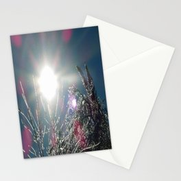 Sun Sparkles Ice Covered Trees Stationery Cards