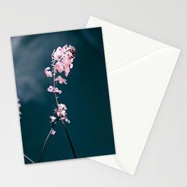 Pink Mustard Stationery Cards