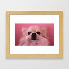 Mugshot Framed Art Print