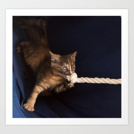 cute striped ginger kitten plays with knotted rope  Art Print