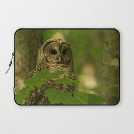 Beautiful Barred Owl Mother Laptop Sleeve