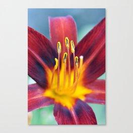 Tingling Sensation Canvas Print
