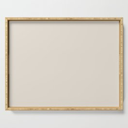 Best Seller Sherwin Williams Colors of 2019 Porcelain (Off White Cream Ivory) SW 0053 Solid Color Serving Tray