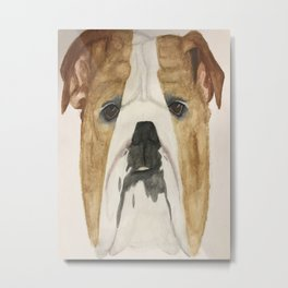Bulldog's drawing Metal Print