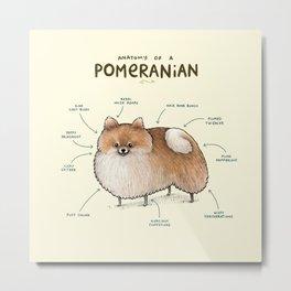 Anatomy of a Pomeranian Metal Print